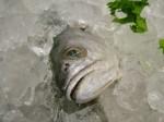 Utilísimo truco para hervir huevas de merluza sin que se desmenucen.