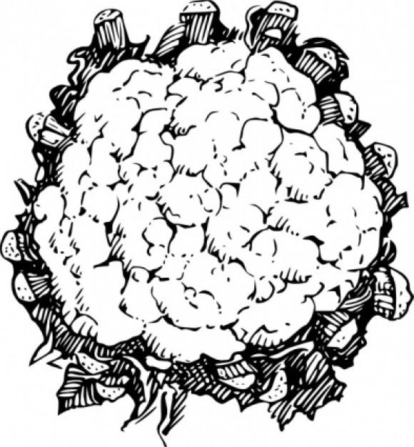 Coliflor sin olor